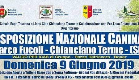 Esposizione  Nazionale Canina - Domenica 9 Giugno 2019 - Parco Fucoli